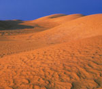Kazakhstan, Scattered barkhans in the Maliye Barsuki sands